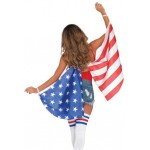 American Flag Stars and Stripes Festival Wings at Burlesque Diva, Celebrate Burlesque - Costumes, Shoes, and Accessories for Performers