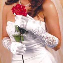 Formal Embellished Satin Gloves Burlesque Diva Celebrate Burlesque - Costumes, Shoes, and Accessories for Performers